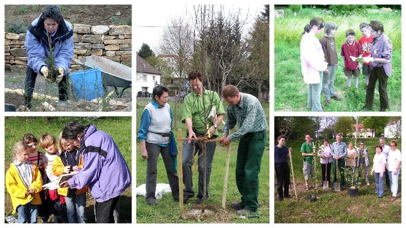 Hiltrud Trattner bei Aktionen des Arbeitskreises Naturnahes Grün