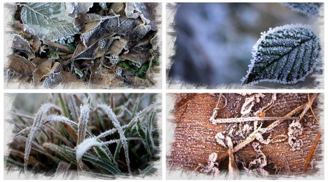 Was macht denn jetzt der Fotograf im Winter?